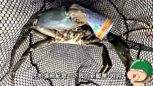 前打钓鱼,鲈鱼红槽鱼黑鲷鱼瓜瓜还有大螃蟹