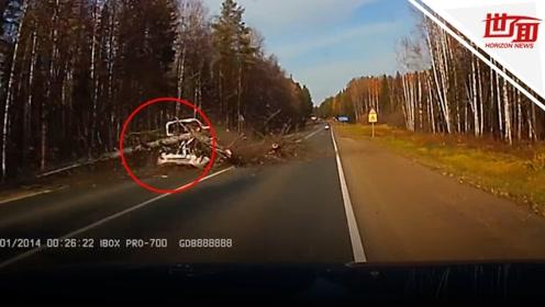 监拍:路边大树轰然倒下 砸中车辆碎片满天飞