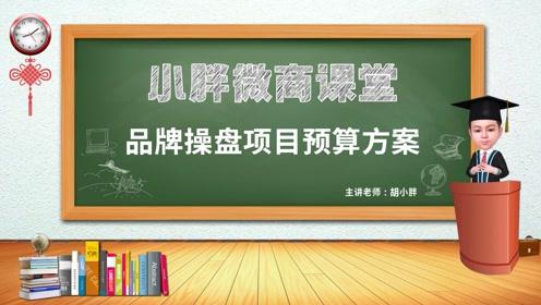 NO.69 胡小胖:微商品牌操盘项目预算方案 -小胖微商课堂
