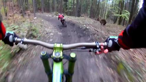 男子和同伴在森林中骑行,却被1只棕熊疯狂追赶,上演生死时速