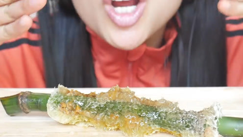 吃播果然什么都敢吃,刚摘下来的蜂巢大口啃,不会被蜜蜂蜇到吗