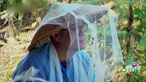 恐虫症患者李汶翰自制捕蜂装备 李家父子宛如参加侠盗风轰趴