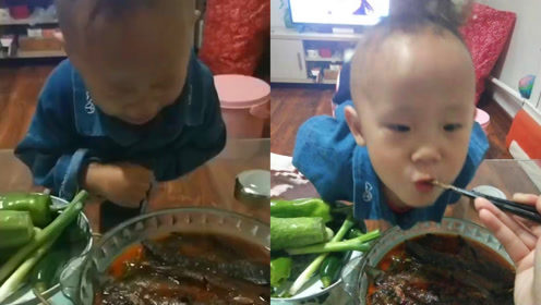 笑喷!2岁男童心爱泥鳅被做熟哭成泪人,入嘴一口后竟说真香