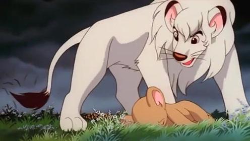 小狮子贪玩中了剧毒,奄奄一息之际,得到探险队的帮助