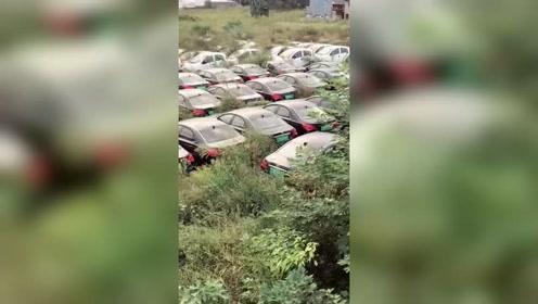 几百辆新能源车就这么放着,干嘛就不能便宜卖了?