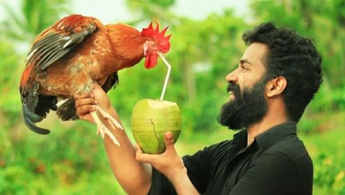 小哥野外制作美味的椰子鸡,网友:看得肚子都饿了!