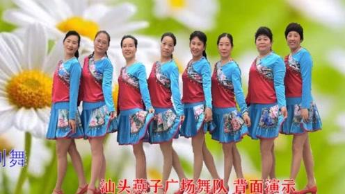 汕头燕子广场舞《泉水叮咚响》团队背面完整演示