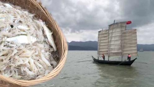 滇池首捕鱼虾上岸,大妈自备午餐赶30公里路尝鲜