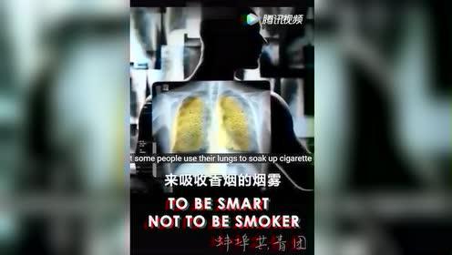 科普一下二手烟危害!