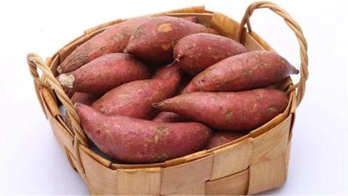 保存红薯只需一个小方法,放半年也不会发霉变质,还越放越甜!
