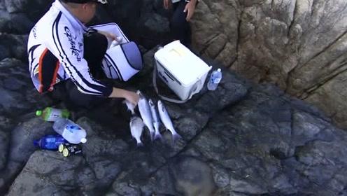 台湾省离岛马祖矶钓,最终鱼获一看都是大鱼,羡慕不已