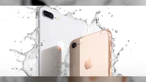 还在等iPhone SE2?最小屏旗舰!苹果8不足3200