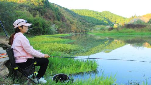 钓鱼,这么好的环境和资源!别说免费,就算出100块我都天天来