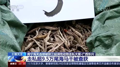 南宁海关连续破获三起濒危动物走私大案