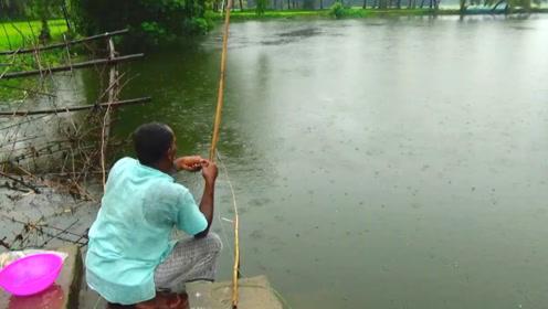 钓鱼:下雨了,也不撑伞
