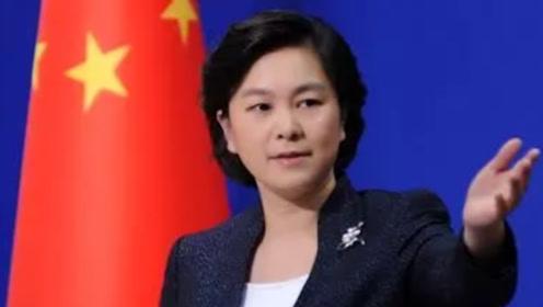 对香港大放厥词 却对这两国暴力示威装瞎 刚刚华春莹在线怒怼西媒