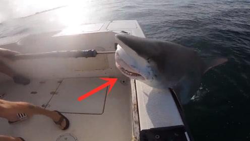 鱼竿突然失控,小伙急忙拉拽鱼竿,渔获上岸却吓得不敢靠近!