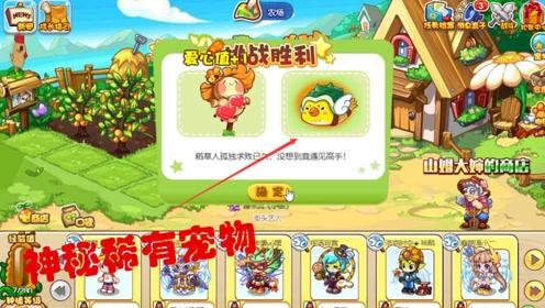 洛克王国历险记:陪稻草人玩耍,竟出现了神秘的稀有宠物云翼雀