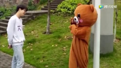 网红熊又来搞怪!以销魂舞姿拍抖音!最后一只多半是中了抖音的毒