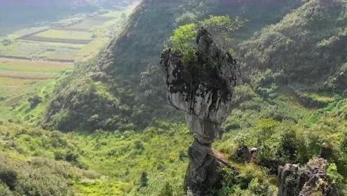 大爷上山采药,意外找到一个悬浮大山,专家看过后认为非常不科学