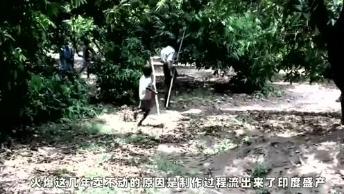 在印度,他们制作芒果干的过程让围观者恶心到吐,中国好像进口很多!