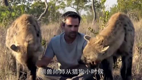 鬣狗为什么怕非洲人?驯兽师告诉你真实原因,看完满满的心酸!
