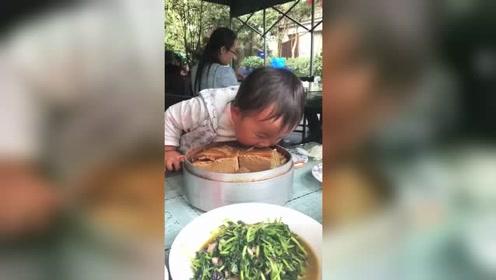 没筷子怎么吃?这就是传说中的,君子动口不动手!