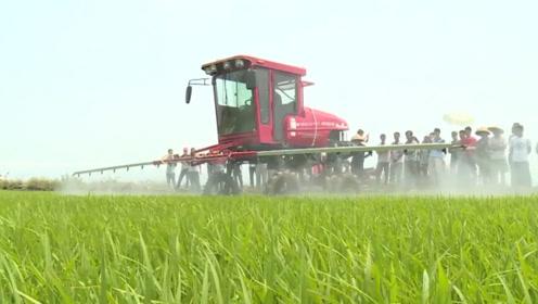 农村大叔发明多功能洒药机,水田旱田都能用,1天轻松搞定200亩地