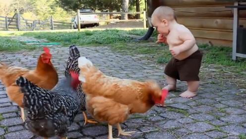 宝宝正在喂鸡,接下来的动作够我笑一星期,太搞笑了!