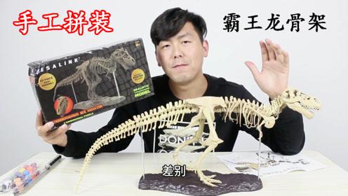 60多个骨骼,耗时一下午,纯手工拼装仿古恐龙骨架摆件,太有创意