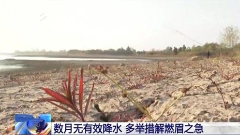 安徽51个市县遭遇重度干旱,有地方数月无有效降水!