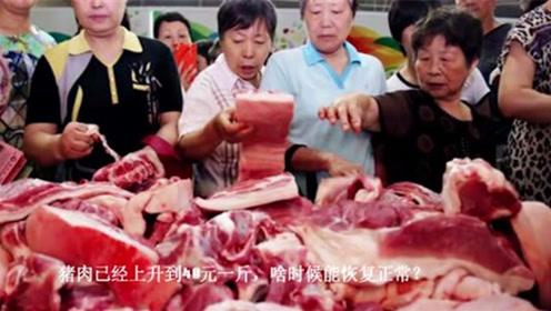 """猪肉价格""""涨跌两难"""",到底是怎么一回事?专家说出了心声!"""
