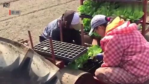 前三季度贫困地区农村居民人均可支配收入8163元