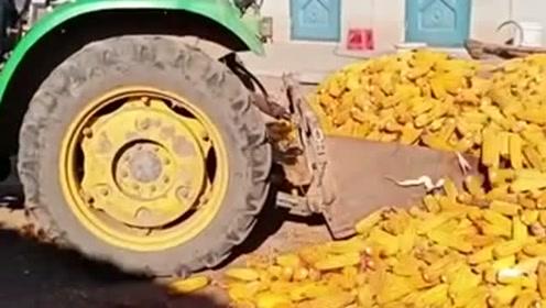 高手在民间,设计成这样铲玉米,简直就是农民工的福利!