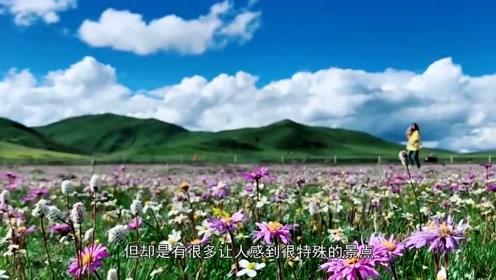 """天津被忽视的景点:被誉为""""天津的神农架"""",还是4A景区"""