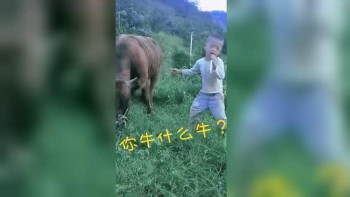 自娱自乐牛什么牛?!