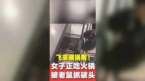 """飞来横祸!女子吃火锅被""""天降""""老鼠抓破头,饭店赔偿5700元"""