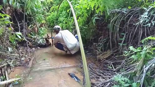 大叔野溪打造独特的捕鱼陷阱,大半天过后,收获真是让人意想不到