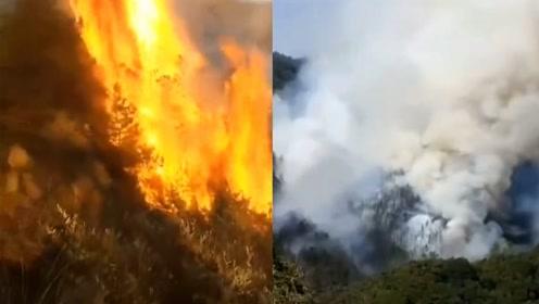 安徽铜陵郊区突发山火!现场浓烟滚滚 消防正在全力扑救