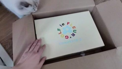 球鞋开箱:巨帅的小花X CONVERSE联名爆款,爱了爱了!
