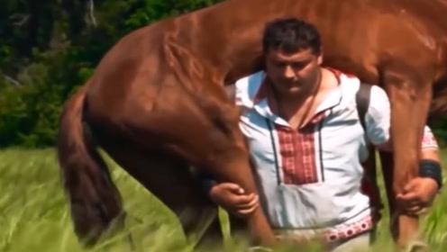 强壮大力士轻松扛起一匹马,拥有多项世界纪录,汽车轧他毫发无伤