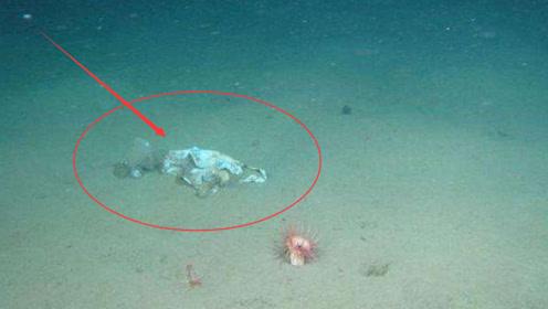 我国潜水艇深入水下3700米,眼前这一景象让人惊讶,这还是地球吗