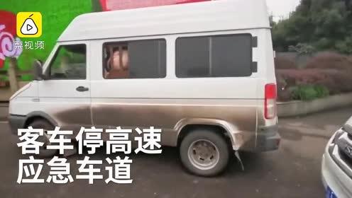 """客车高速停摆,车里酣睡14头""""乘客"""""""