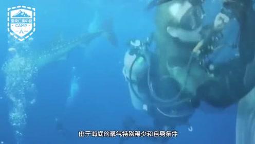 国外设计师设计出了一款人工鱼鳃呼吸器,可自动转换海底的氧气