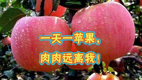 一天一苹果,肉肉远离我!这样吃苹果还能轻松养成易瘦体质!