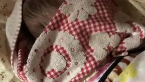 小宝宝被毛巾挡脸呜呜叫!拿开毛巾看到妈妈开心的样子!太萌了!