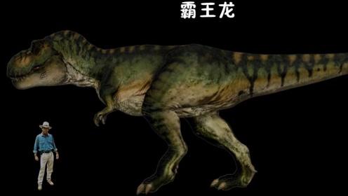 《侏罗纪公园》的恐龙集合与对比,从小不点到巨无霸