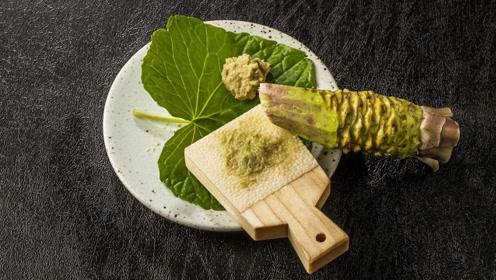 芥末那么难吃,究竟是用什么制作出来的?难怪日本人喜欢吃!