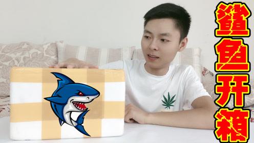 鲨鱼开箱:买了条非常凶猛的鲨鱼,成吉思汗鲨,这鲨鱼会咬人吗?