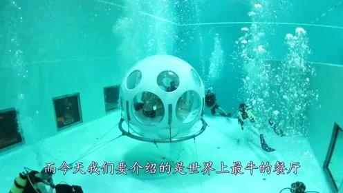 全球最牛的餐厅,吃一顿至少1000元,必须潜到水下才能吃!